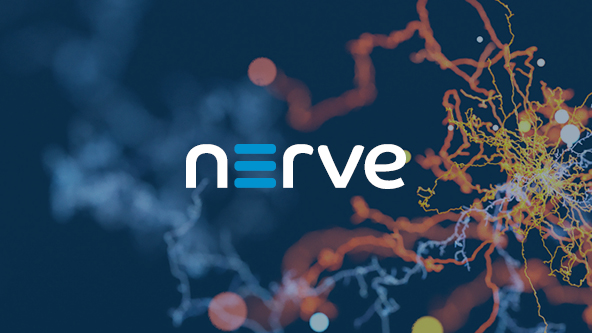 Modular Offering Nerve featured image